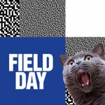 FIELD DAY 2015 | OUR PICK OF SATURDAY'S ACTION